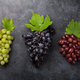 Colorful grapes - PhotoDune Item for Sale