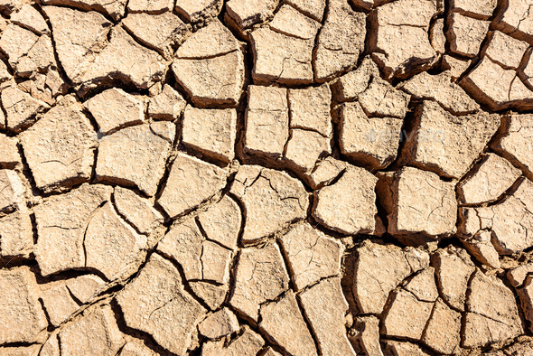Cracks of the dried soil background - Stock Photo - Images