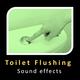 Toilet Flushing Sounds