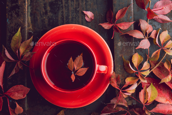 Autumn background with cup of tea and red leaves on dark background. Top view, copy space. - Stock Photo - Images