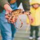 Man Holding Crab - PhotoDune Item for Sale