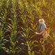 Female agronomist advising corn farmer in crop field - PhotoDune Item for Sale