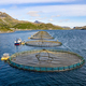 Farm salmon fishing in Norway - PhotoDune Item for Sale