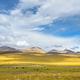 beautiful grassland scenery - PhotoDune Item for Sale