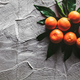 Tangerines (oranges, mandarins, clementines, citrus fruits) with leaves on gray cement background - PhotoDune Item for Sale