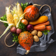 Various autumn vegetables. Harvest concept - PhotoDune Item for Sale
