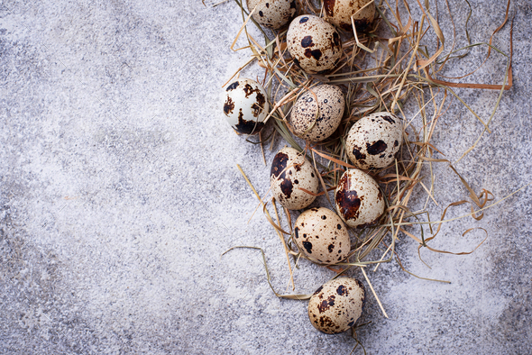 Quail eggs and straw on light background - Stock Photo - Images