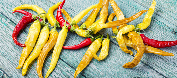 Fresh chili pepper - Stock Photo - Images