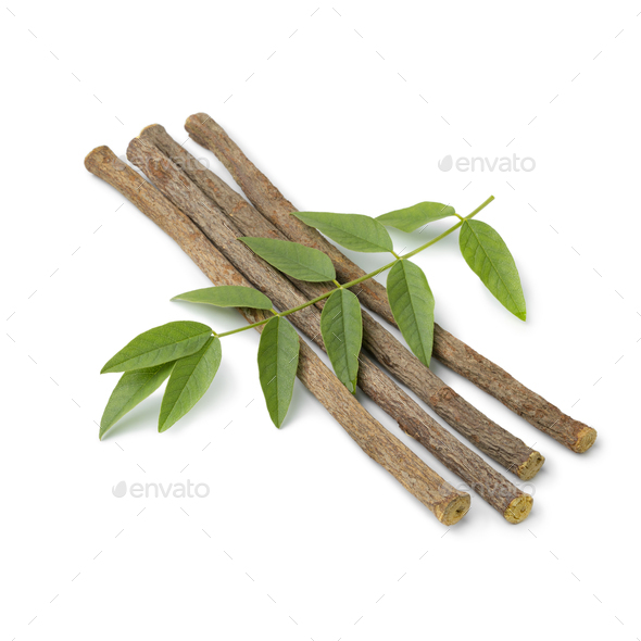 Licorice roots and fresh green leaves - Stock Photo - Images