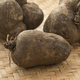 Fresh raw brown yams - PhotoDune Item for Sale