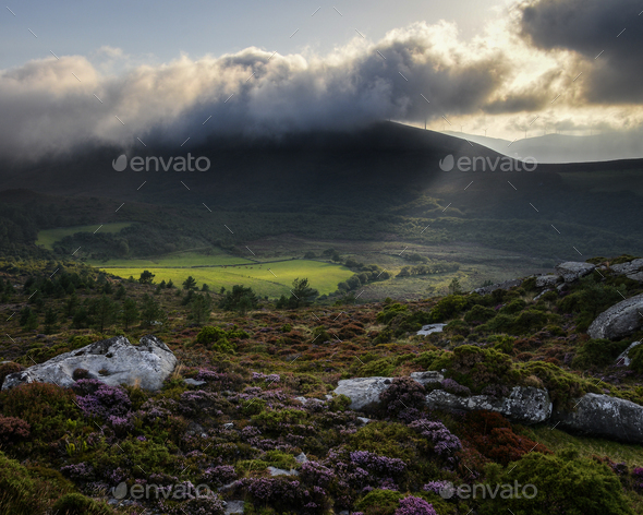 Meadow illuminated by a Sunray filtered through the Clouds - Stock Photo - Images