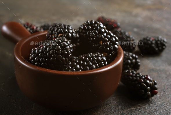 blackberry - Stock Photo - Images