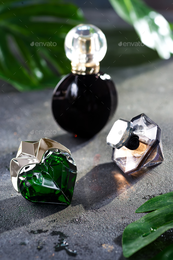 Women's perfume in beautiful bottle with green leaves on a black concrete background with bright - Stock Photo - Images