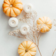 Flat lay composition of small pumpkins - PhotoDune Item for Sale