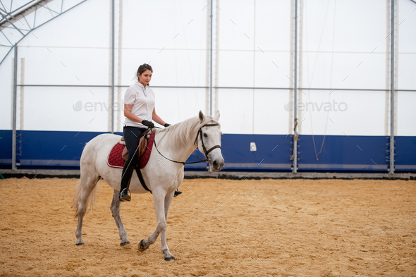 Young woman in skinny jeans and white polo shirt sitting on back of racehorse - Stock Photo - Images