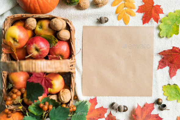 Top view of blank paper among autumn leaves, acorns, walnuts and ripe apples - Stock Photo - Images