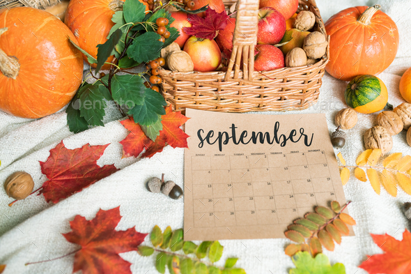 September background with ripe apples and pumpkins, walnuts, acorns and leaves - Stock Photo - Images