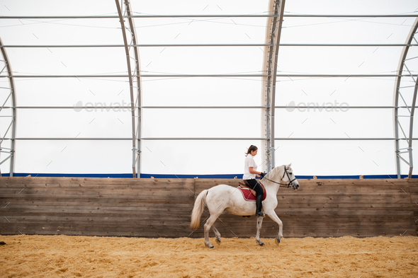 Young female moving along wooden fence while sitting on back of white horse - Stock Photo - Images