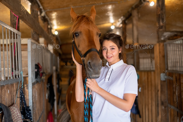 Pretty young smiling brunette keeping one hand by muzzle of purebred brown mare - Stock Photo - Images