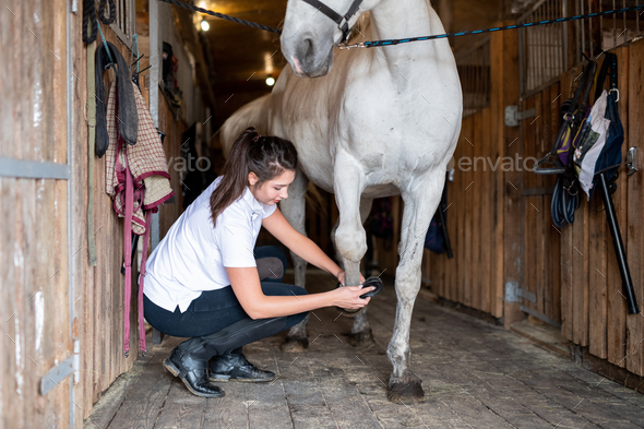 Young female carer in casualwear cleaning hoof of white purebred racehorse - Stock Photo - Images