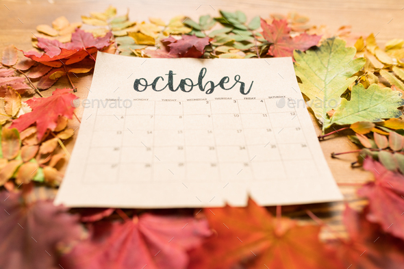 Autumn composition consisting of paper sheet of October calendar and leaves - Stock Photo - Images