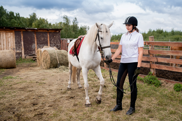 Young woman in equestrian helmet and sportswear chilling out with her racehorse - Stock Photo - Images