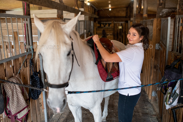 Young active woman putting saddle on back of white purebread racehorse - Stock Photo - Images