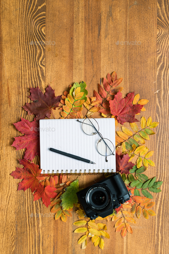 Top view of photocamera, copybook with pen and eyeglasses surrounded by leaves - Stock Photo - Images