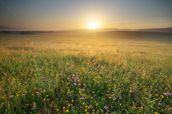 Morning nature landscape. - Stock Photo - Images