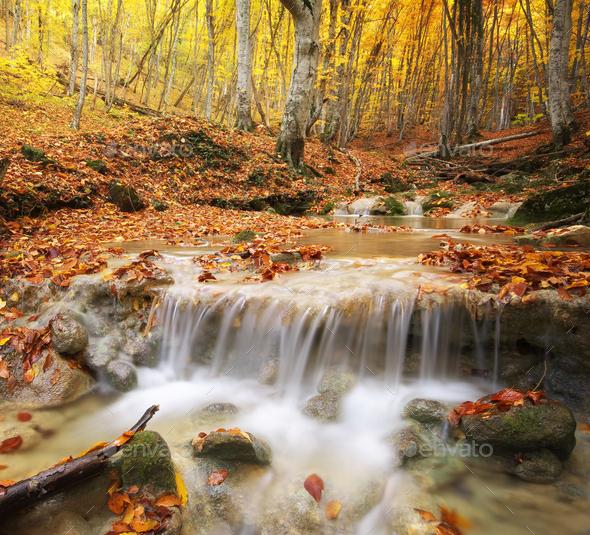 Autumn landscape. - Stock Photo - Images