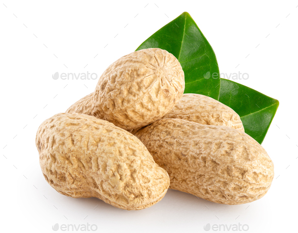 Peanut pods with the green leaves - Stock Photo - Images
