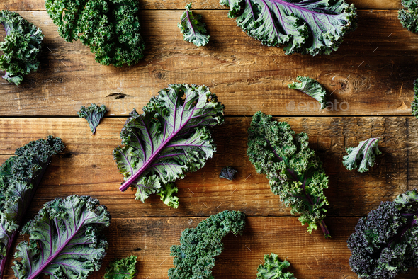 Freshly cut purple Kale leaves - Stock Photo - Images