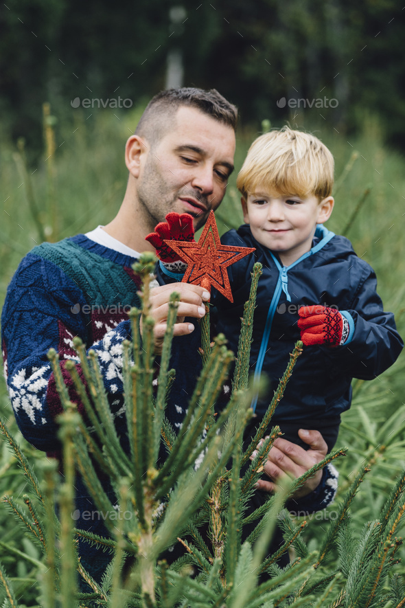 Family buying a Christmas tree in the wood - Stock Photo - Images