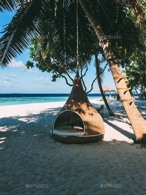Maldives island luxury resort palm tree with hanging hammock - Stock Photo - Images