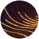 Golden Strings Logo - VideoHive Item for Sale