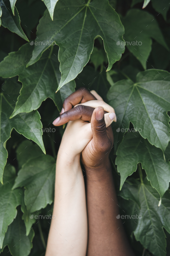 mixed race hands holding each other in nature - Stock Photo - Images