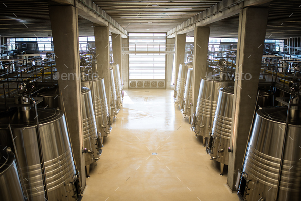Modern winery with big steel barrels - Stock Photo - Images