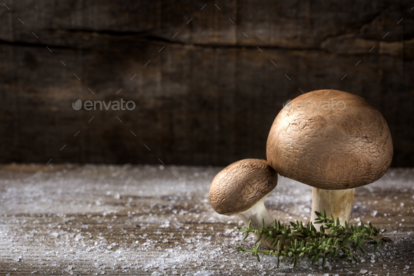 Two brown mushrooms with salt - Stock Photo - Images