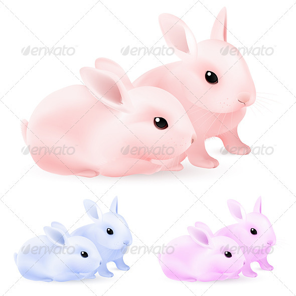 Easter Rabbits - Animals Characters
