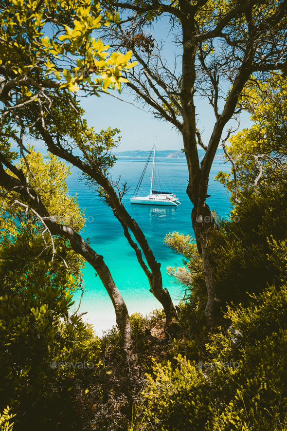 White catamaran yacht in clear blue transparent sea water surface hidden framed by branches of pine - Stock Photo - Images