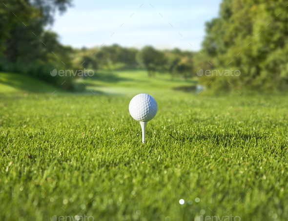 Low Angle View Of Golf Ball On Tee In Front Of Defocused Fairway Stock Photo By Danthornberg