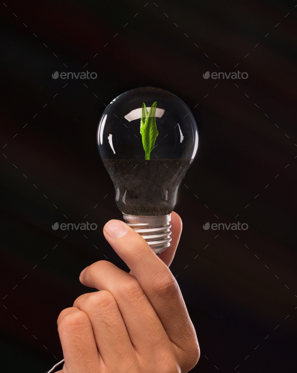 Man holding light bulb with growing plant - Stock Photo - Images