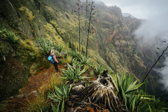 Female traveler staying on the cove volcano edge above the foggy green valley overgrown with agaves - Stock Photo - Images