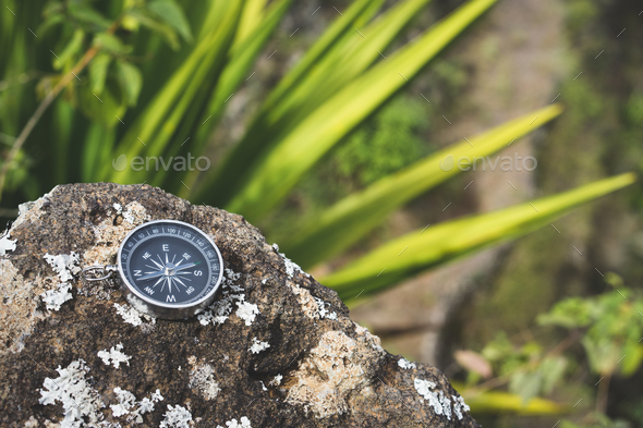 Navigation concept - Analogical compass laying on the rocky stone. Agave plant leaves in background - Stock Photo - Images