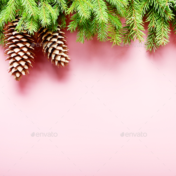 Flat lay design of Christmas greeting card of fir twigs and cone - Stock Photo - Images