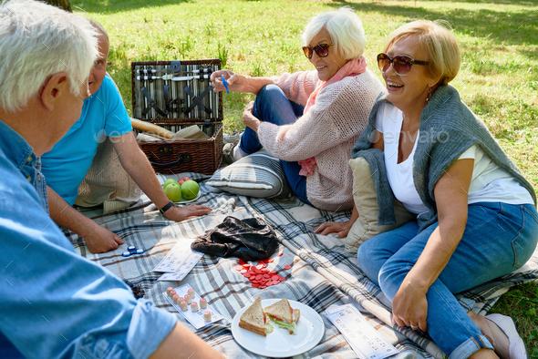 Senior People Enjoying Picnic in Park - Stock Photo - Images