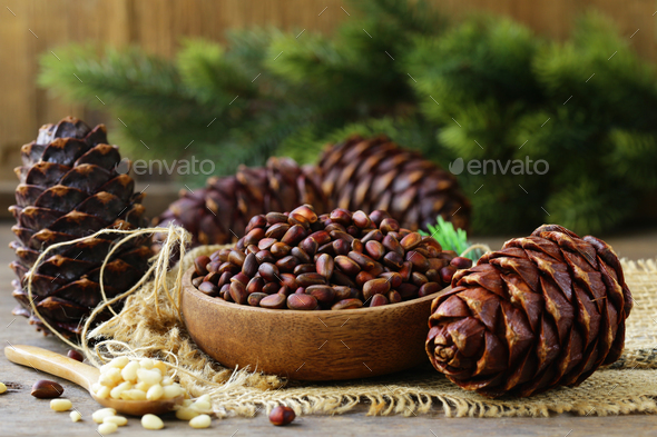 Pine Cones and Nuts - Stock Photo - Images