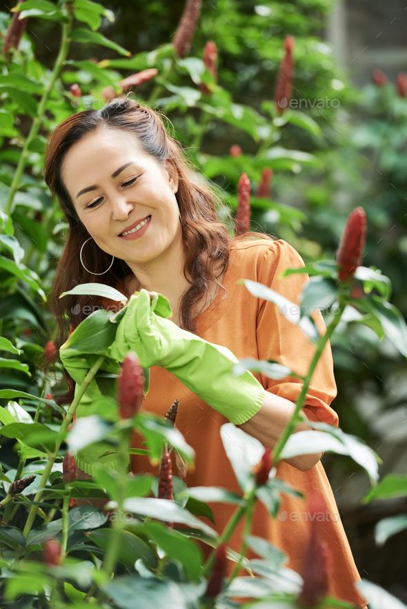 Working in garden - Stock Photo - Images