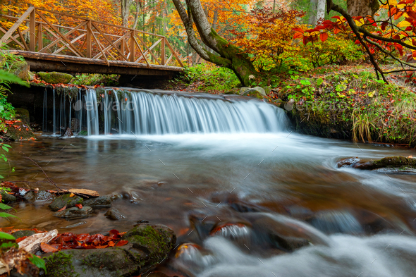 Mountain waterfall in autumn forest - Stock Photo - Images