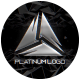 Platinum Logo - VideoHive Item for Sale